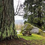 Big Rock Park – The Smallest King County Park in Washington State